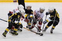 Кубок Виктора Перегудова по хоккею: серебро осталось в Челябинске