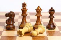 Челябинки взяли «быстрое» серебро и бронзу Первенства России-2018 по шахматам